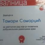 IMG_20141212_141243_1